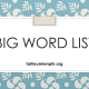Big word list